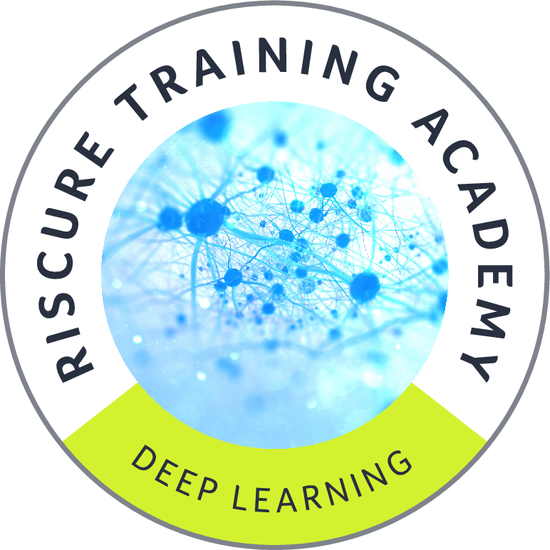 Riscure's Deep Learning Training
